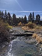 Cold Creek (Donner Creek tributary)