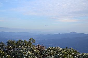 View from Mount Saint Helena