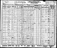 1930 census Norton Carr.jpg