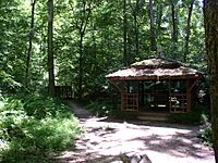 Botanical garden hut