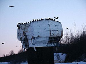 Old NIKE Missile radar dome with ravens