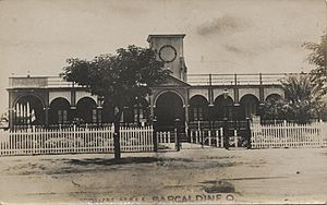 StateLibQld 1 253765 Town Hall at Barcaldine, ca. 1920