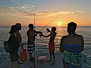 2017 Sarasota Cortez Beach Angling at Sunset at the Sea Wall 4 FRD 7164