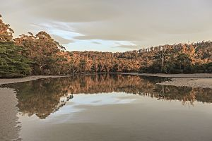 Cockle Creek Tasmania by Aldona Kmiec Photography