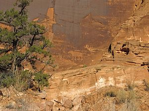 Petroglyphs, Potash Road, near Moab, Utah