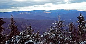 View northeast from Panther summit, Catskills