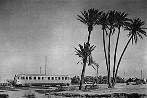Fiat Train Passing in to Cyrenaica