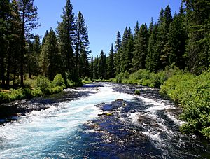 Metolius River near Wizard Falls