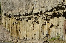 Columnar basalt closeup near Tower Fall in Yellowstone
