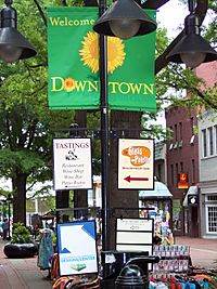 Downtownmallcville