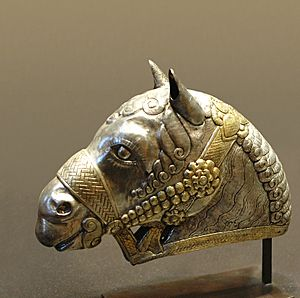 Head horse Kerman Louvre MAO132