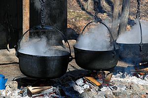 Maple syrup being prepared at the Kortright Conservation Centre