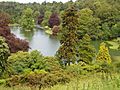 Stourhead Garden View from Above