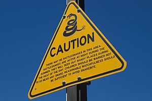 Caution, rattlesnakes (sign)