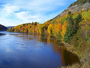 Nature's Autumn Palette on Newfoundland's Humber River in 2007