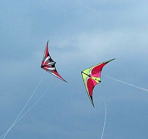 Kite Facts for Kids