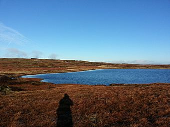 An upland lake surrounded by peat grass