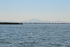Franks Tract in Sacramento–San Joaquin River Delta with Mount Diablo in background