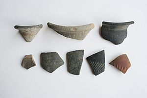 Fragments of early pottery canvey island