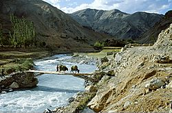 The Walna river, Wanla village, Zanskar