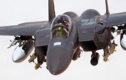 RAF F-15E Strike Eagle Iraq 2004