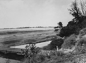 StateLibQld 1 393765 Burdekin River at its lowest level, 1948