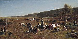 Jonathan eastman johnson cranberry harvest
