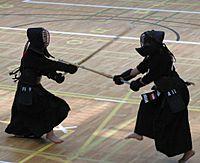 Kendo EM 2005 - kote
