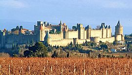 Carcassonne and vineyards