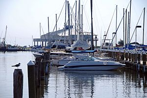 FEMA - 37538 - Pass Christian Harbor with docked boats in Mississippi