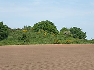 Grimston Warren Pit 1.jpg
