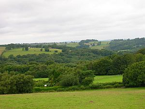 View from Blackdown Hill - geograph.org.uk - 505787.jpg