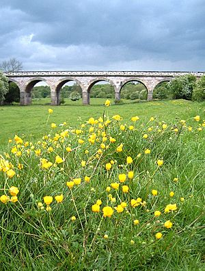Viaduct - geograph.org.uk - 11601