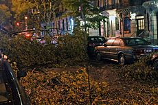 Hurricane Sandy on 101st St