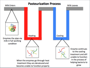 Simple Pasteurization