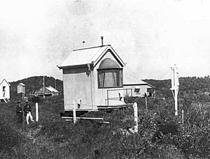 Yellow Patch, Queensland 1917