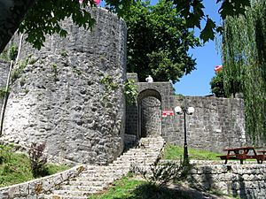 Entrance of the Castle of Rize, Rize, Turkey