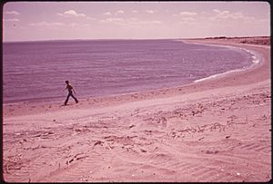 BEACH AT GREAT KILLS PARK ON STATEN ISLAND - NARA - 547943