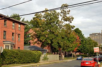 Collins and Townley Streets2.jpg