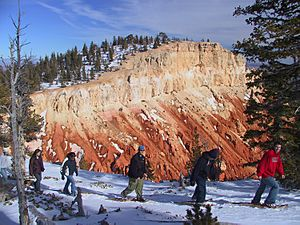 Snowshoers in Bryce Canyon