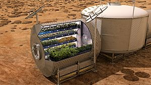 Mars Food Production - Bisected