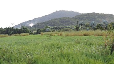 Looking north over fields from Cartwright Road, Eubenangee, 2018.jpg