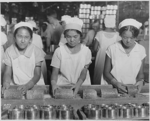 Food-Hawaii-Canning. Native girls packing pineapple into cans. - NARA - 522863