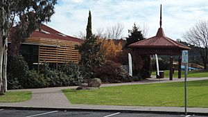 Stanthorpe library and art gallery, 2015 01