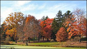Kenilworth Park in the Fall