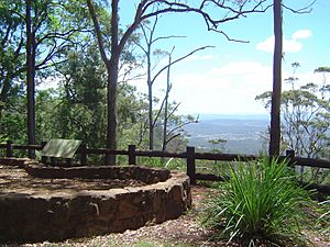 The Knoll Lookout Tamborine Mountain