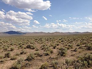 2013-07-04 15 37 14 Sagebrush-steppe along U.S. Route 93 in central Elko County in Nevada