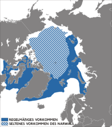 Narwhal distribution map