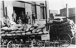 Pinon nuts packed for shipment, 1921