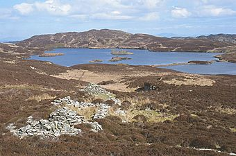 Ruinous shielings above Loch an Sgoltaire - geograph.org.uk - 763249.jpg